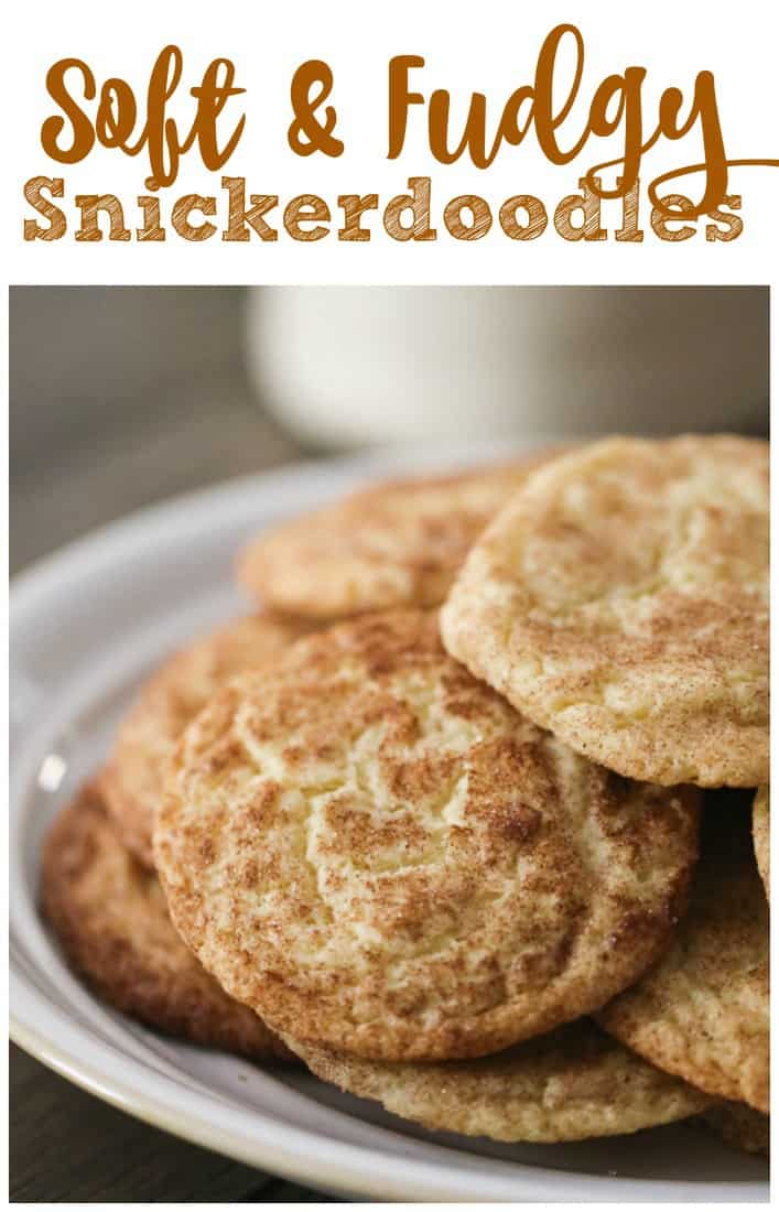 Soft and Fudgy Snickerdoodles
