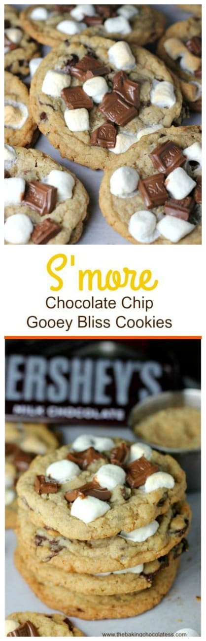 S'more Chocolate Chip Gooey Bliss Cookies! These tempting S'more Chocolate Chip Gooey Bliss Cookies are wicked delicious!   ;)