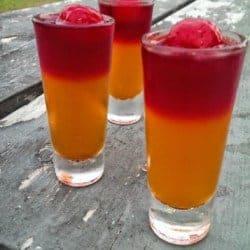 """""""Flip-Flop"""" Tequila Sunrise Jello Shots!!"""