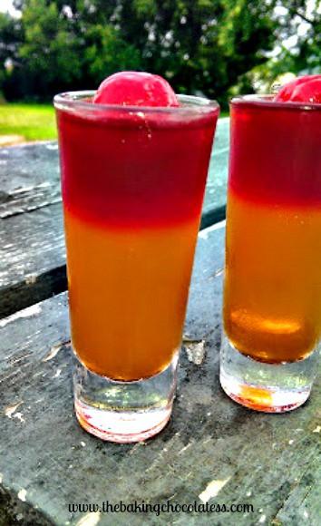 tequilasunrisejelloshot1logo2