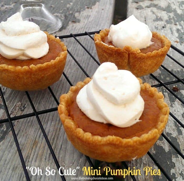 Mini Pumpkin Pie Maple Whipped Creme