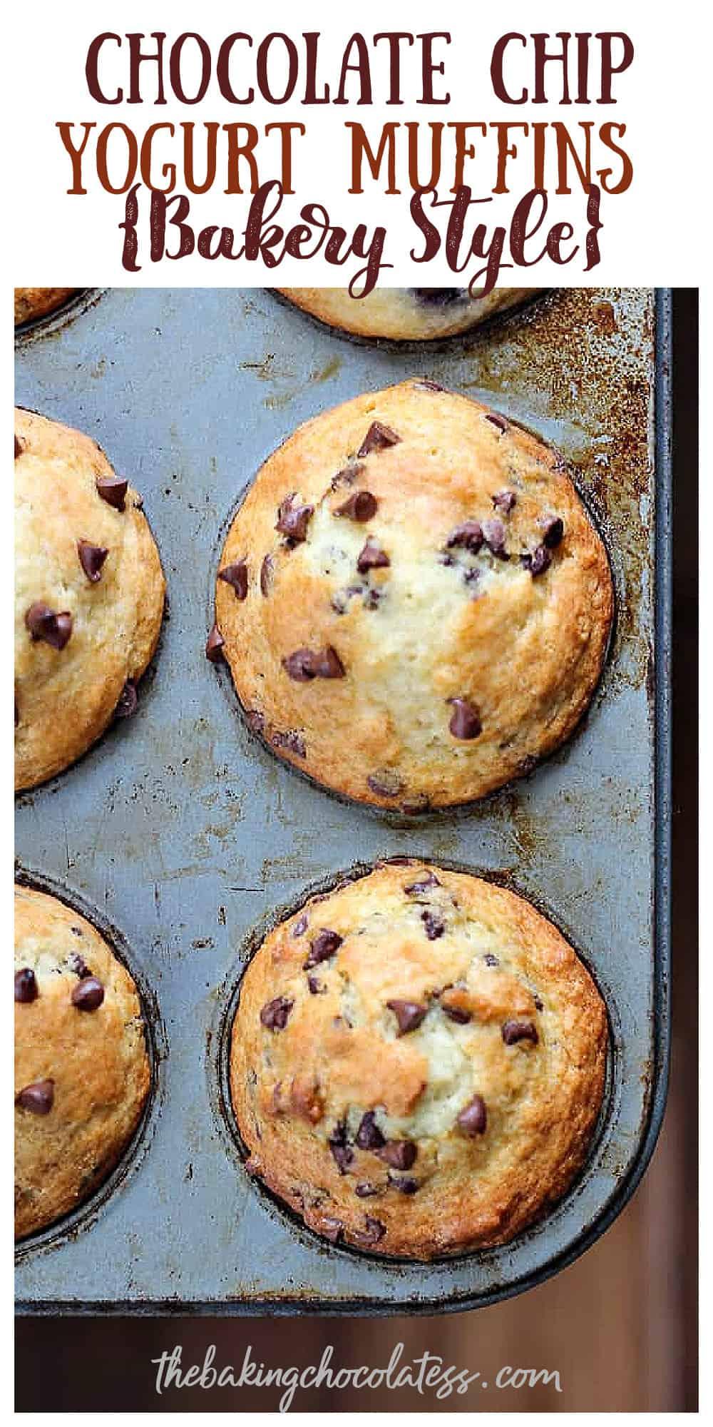 Chocolate Chip Yogurt Muffins {Bakery Style}