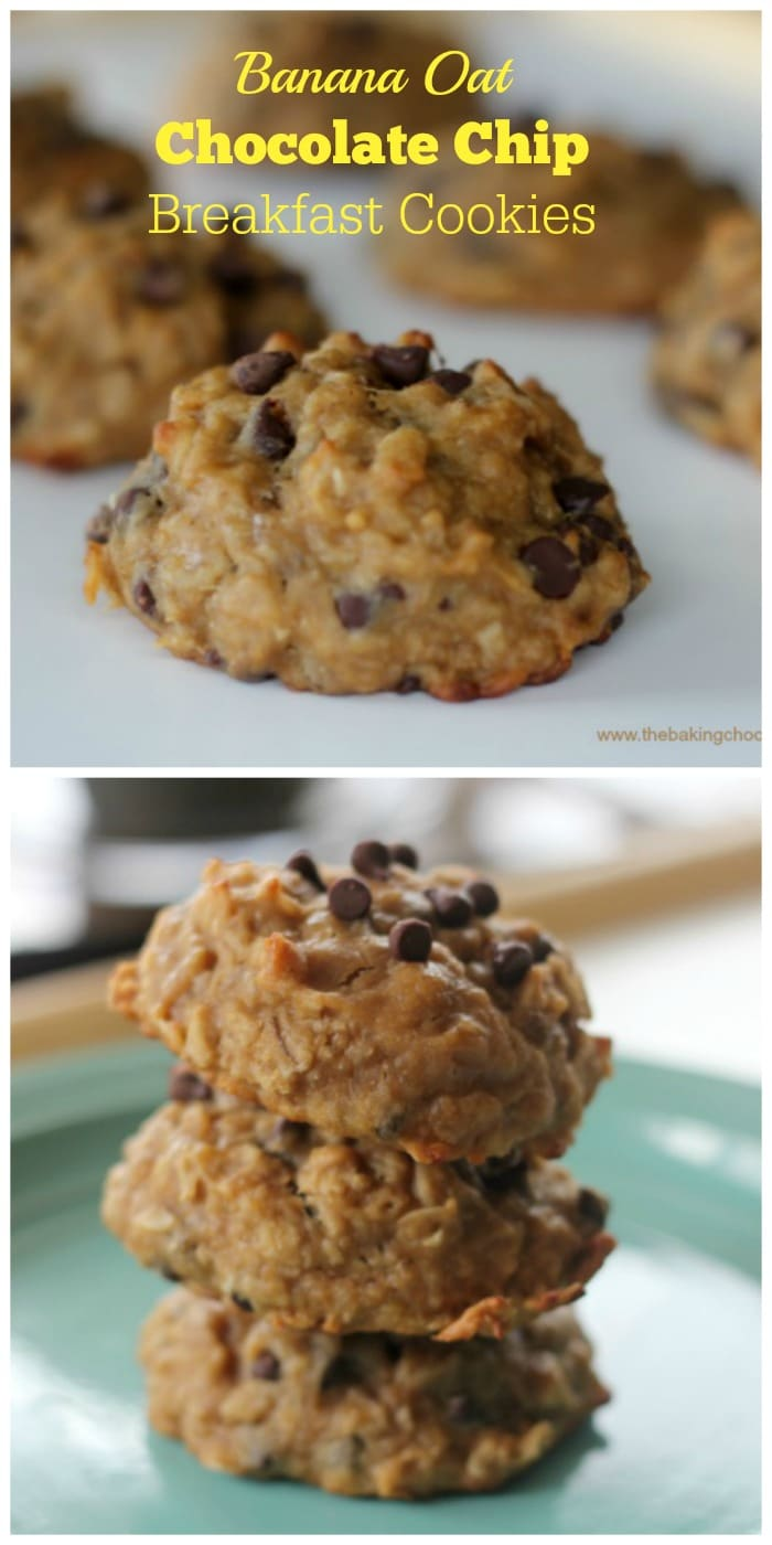 Flourless Banana Oat Chocolate Chip Breakfast Cookies {GF, Vegan}