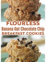 Flourless Banana Oat Chocolate Chip Breakfast Cookies {GF}
