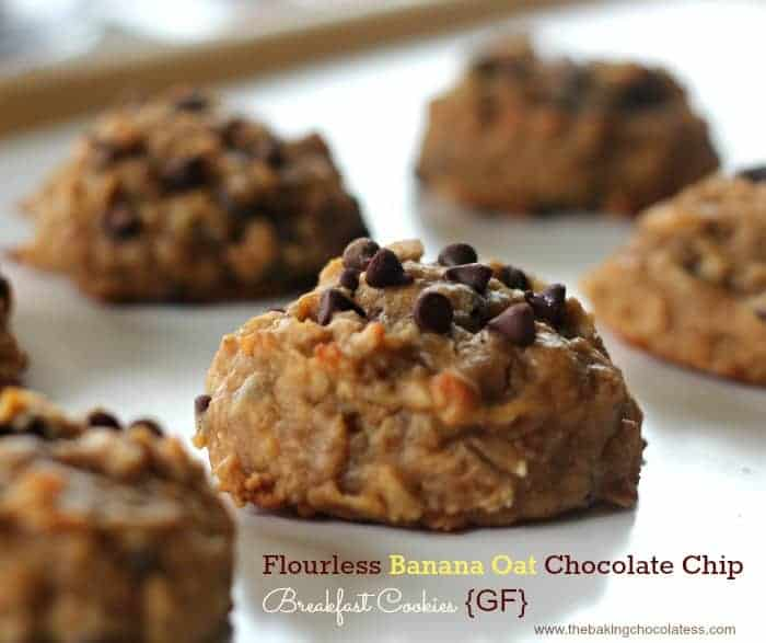 Flourless Banana Oat Chocolate Chip Breakfast Cookies {GF}