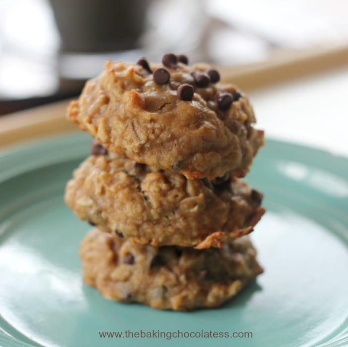 Flourless Banana Oat Chocolate Chip Breakfast Cookies {GF}1