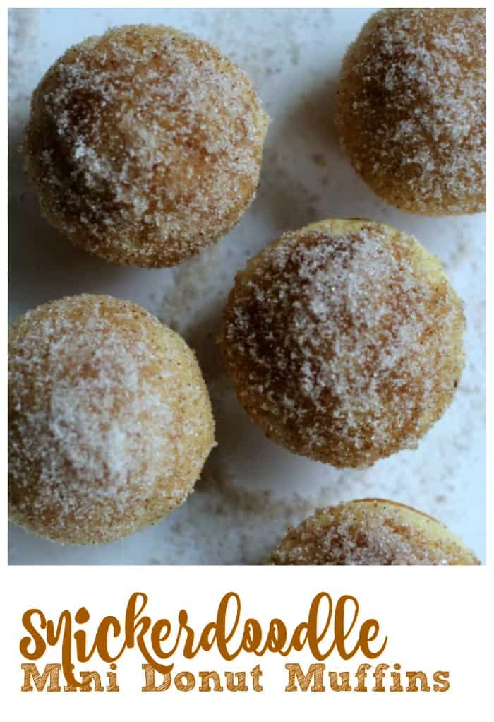 Snickerdoodle Mini Donut Muffins