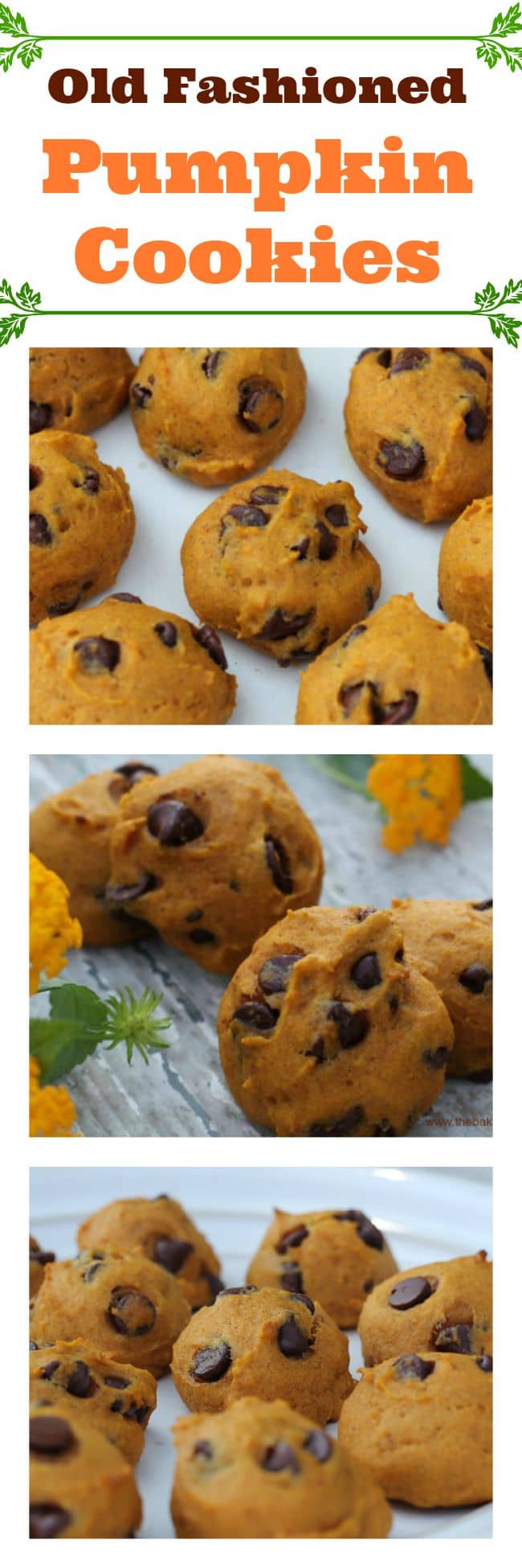 Old Fashioned Pumpkin Chocolate Chip Cookies – The Baking ChocolaTess