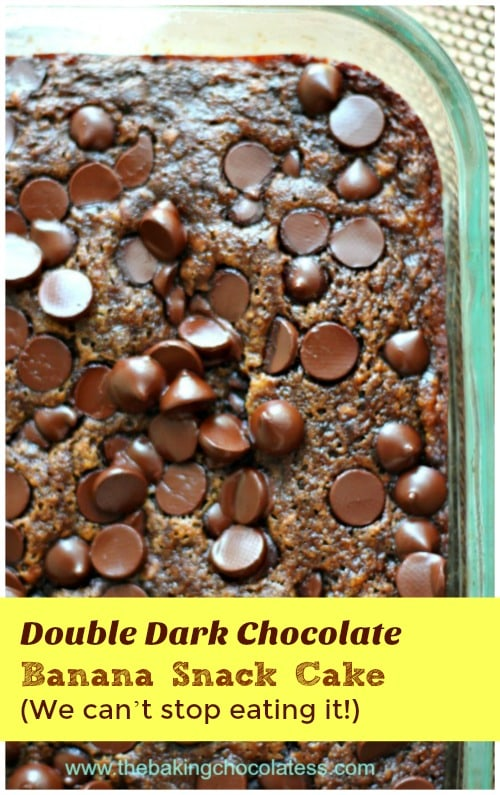 Double Dark Chocolate Banana Snack Cake We Can T Stop