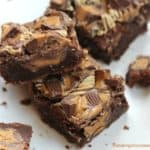 OMG Peanut Butter Cup Brownies