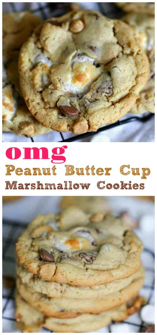 OMG Peanut Butter Marshmallow Cookies  Hello! Big, soft peanut butter cookies loaded with toast marshmallows, Reese's Peanut Butter Cups, rich milk chocolate and peanut butter chips! Trust me, these cookies are not going to last long!  #peanut butter #marshmallow #chocolate chip #cookies #reeses #peanut butter cups #baking