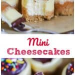 Mini Cheesecakes for Any Occasion!v