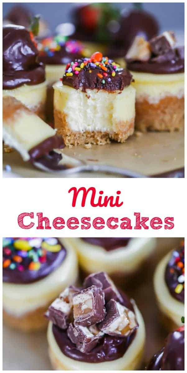 Mini Cheesecakes for Any Occasion!  These minis are creamy, dense and have a lovely firm New York cheesecake texture that is to die for. It sits on a thick, buttery graham cracker crust and add whatever toppings you want for your special occasion! Oh my! #cheesecake #mini #party #dessert
