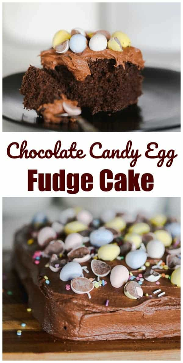 Chocolate Candy Egg Fudge Cake