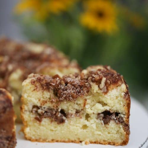 Apple Cinnamon Coffee Cake - Sugar Free Option too!